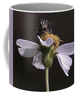 Frontal View Of A Bee On A Flower Coffee Mug