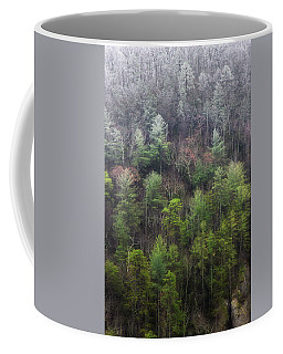 Frost Line Coffee Mug by Mike Eingle
