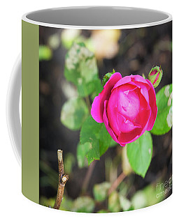 Frostbitten Rose Coffee Mug