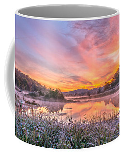 Frosted Dawn At The Wetlands Coffee Mug