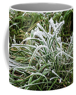 Frosted Grass Coffee Mug