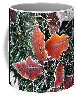 Coffee Mug featuring the photograph Frosted Leaves by Shari Jardina