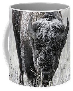 Coffee Mug featuring the photograph Frosted Over by Ronnie and Frances Howard