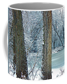 Frosted Swamp Coffee Mug