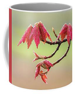 Frosty Maple Leaves Coffee Mug