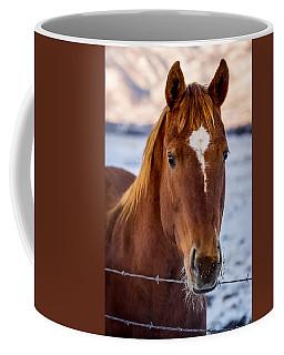 Frosty Morning Coffee Mug