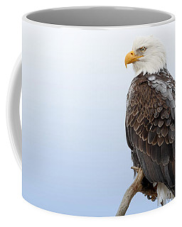 Frosty The Eagle Coffee Mug by Beve Brown-Clark Photography