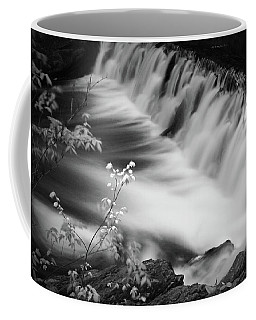 Frothy Falls Coffee Mug