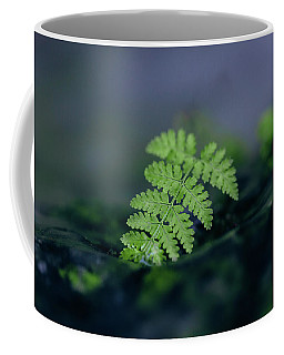 Frozen Fern II Coffee Mug