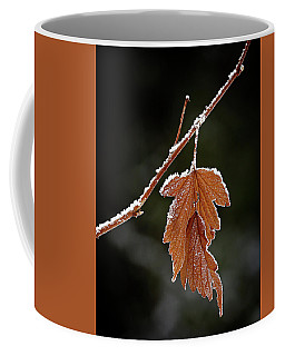 Coffee Mug featuring the photograph Frozen Leaf - 365-287 by Inge Riis McDonald