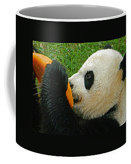 Frozen Treat For Mei Xiang The Giant Panda Coffee Mug
