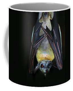 Coffee Mug featuring the photograph Fruit Bat by Anthony Jones