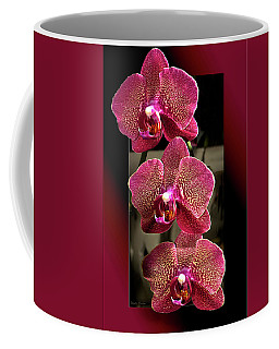 Fuchsia Orchids Oof Coffee Mug
