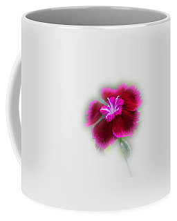 Coffee Mug featuring the photograph Fuchsia Pink Dianthus Tee-shirt by Donna Brown
