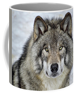 Full Attention  Coffee Mug by Tony Beck