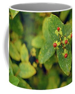 Fall Berry Coffee Mug