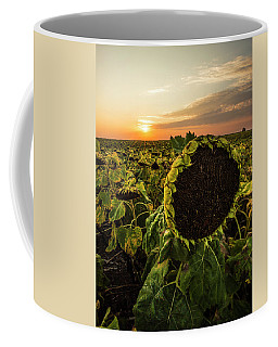 Coffee Mug featuring the photograph Full Of Seed  by Aaron J Groen