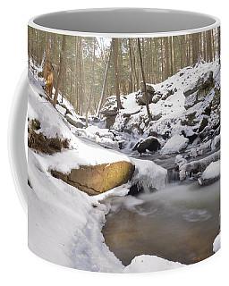 Full Scene  Winter Pool Coffee Mug