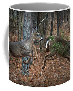 Fun In The Forest Coffee Mug