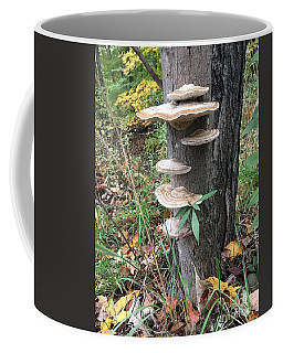 Fungi Coffee Mug by Christine Lathrop