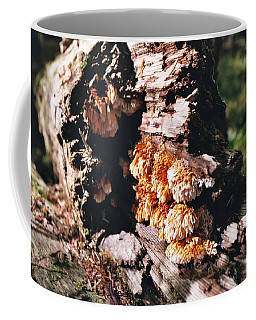 Fungus Is Beautiful Coffee Mug