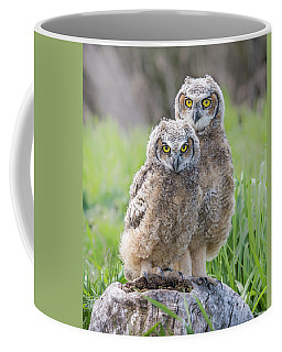 Furrballs Coffee Mug
