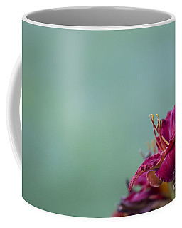 Fuchsia In Bloom Coffee Mug