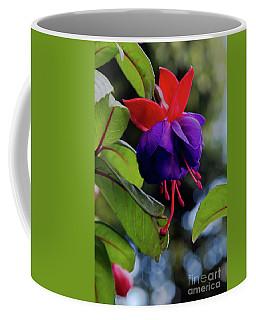 Fuschia Coffee Mug