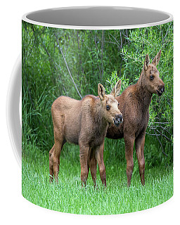 Future King  Coffee Mug
