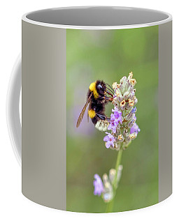 Fuzzy Bee Coffee Mug