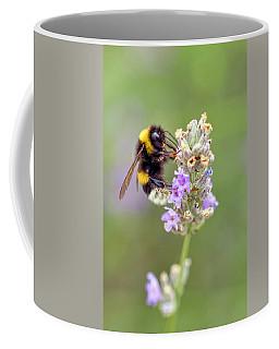 Fuzzy Bee Coffee Mug
