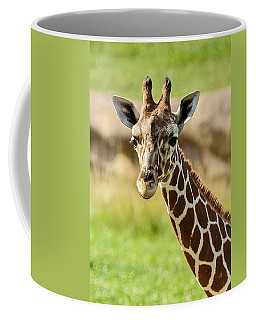 Coffee Mug featuring the photograph G Is For Giraffe by John Haldane