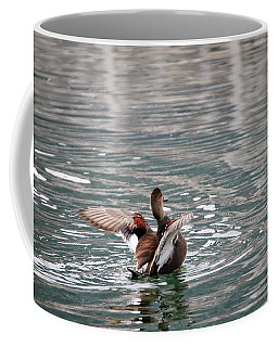 Coffee Mug featuring the photograph Gadwall 2 by Gary Hall