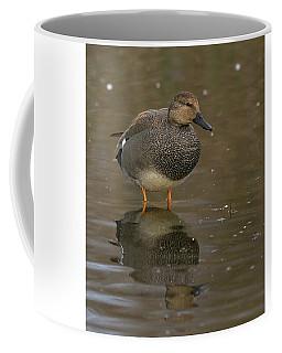 Gadwall Coffee Mug