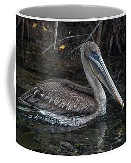 Galapagos Pelican Coffee Mug