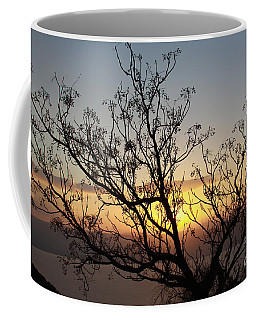 Galilee Sunset Coffee Mug
