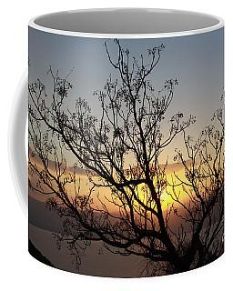 Galilee Sunset Coffee Mug