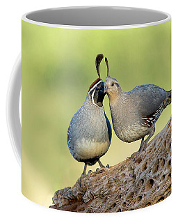Gambels Quails In Love Coffee Mug