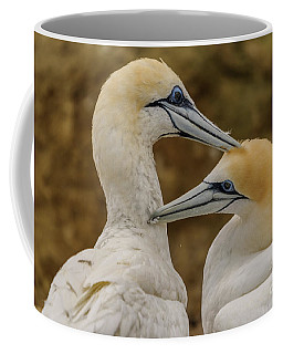 Gannets 4 Coffee Mug