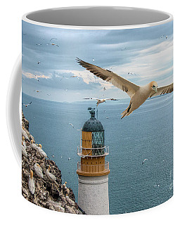 Gannets At Bass Rock Lighthouse Coffee Mug