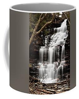 Ganoga Falls Coffee Mug
