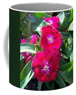 Coffee Mug featuring the photograph Garden Delight by Sandi OReilly
