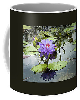 Garden Reflaections Coffee Mug