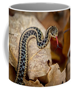 Garden Snake Coffee Mug by Eleanor Abramson
