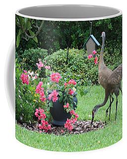 Garden Visitors Coffee Mug