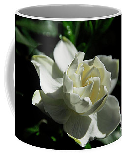 Gardenia 1 Coffee Mug by Cindy Manero