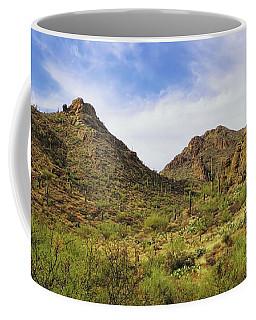 Gates Pass Coffee Mug