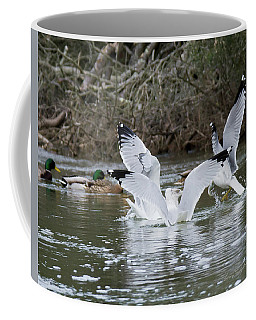 Coffee Mug featuring the photograph Gathering Of Egrets by George Randy Bass