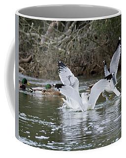 Gathering Of Egrets Coffee Mug
