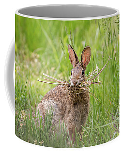 Gathering Rabbit Coffee Mug by Terry DeLuco